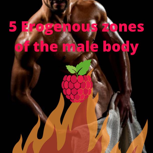 Erogenous zones of the male body